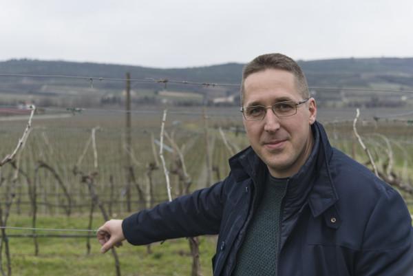 Luca Anselmi